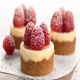 Mini Cheesecake Springform Pan